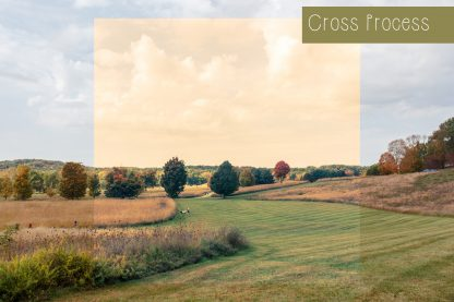 Polka Dot Cottage Lightroom Presets and Photoshop Actions Creative Collection #1: Cross Process