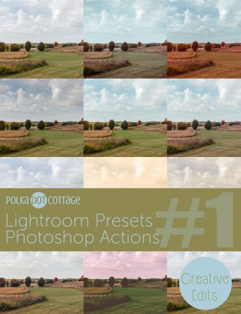 Polka Dot Cottage Lightroom Presets and Photoshop Actions: Creative Collection #1