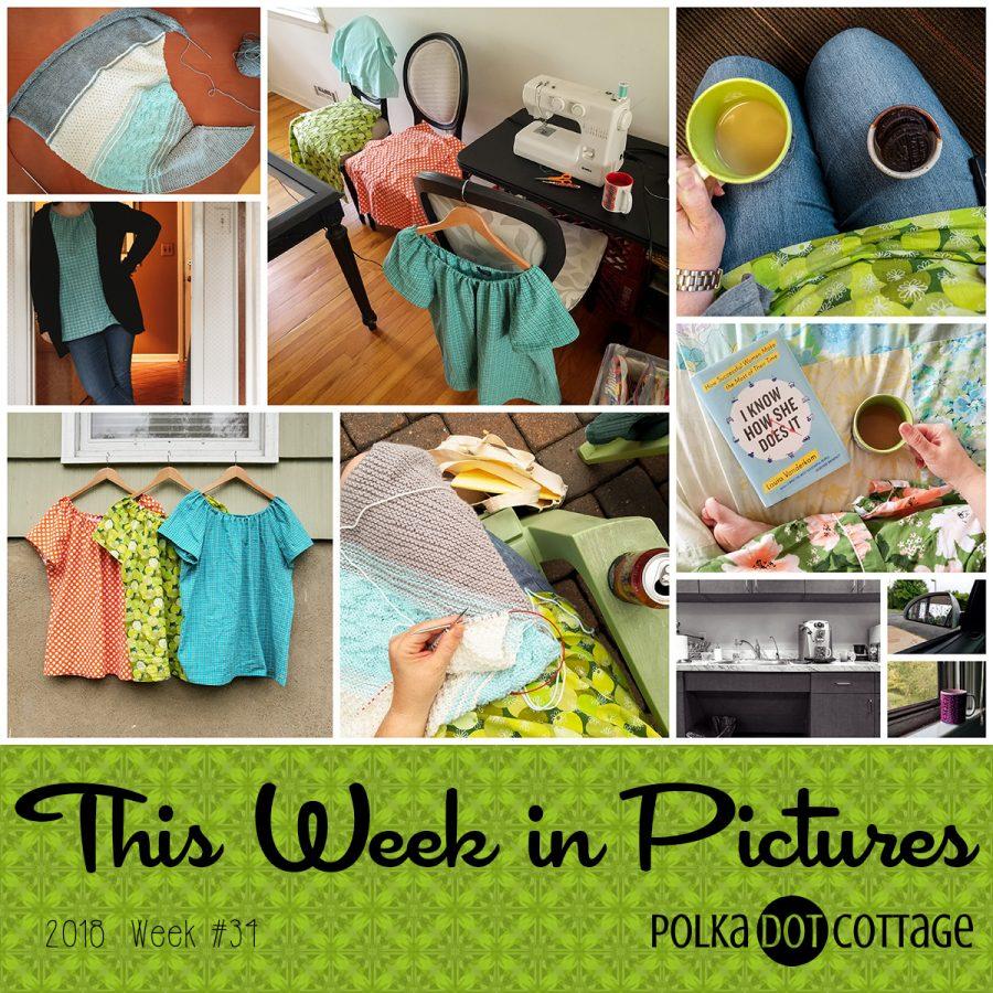 This Week in Pictures, Week 34, 2018