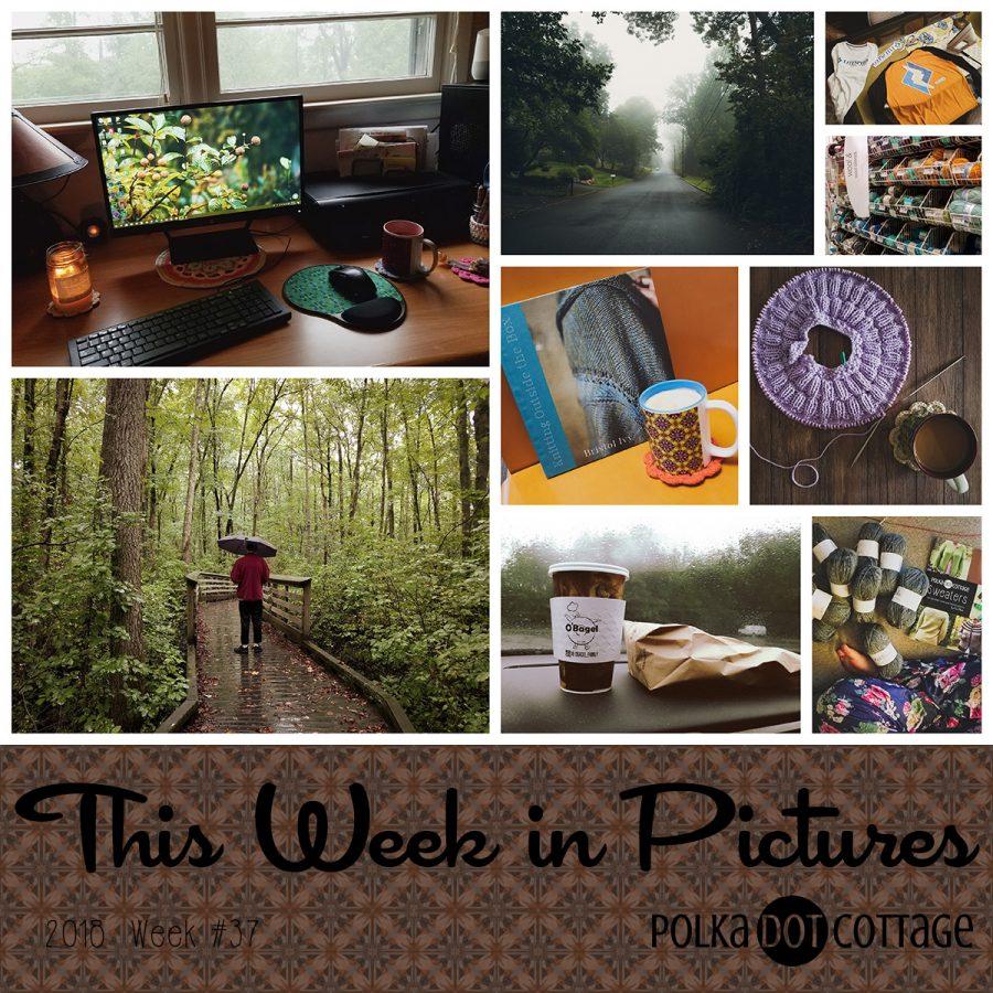 This Week in Pictures, Week 37, 2018