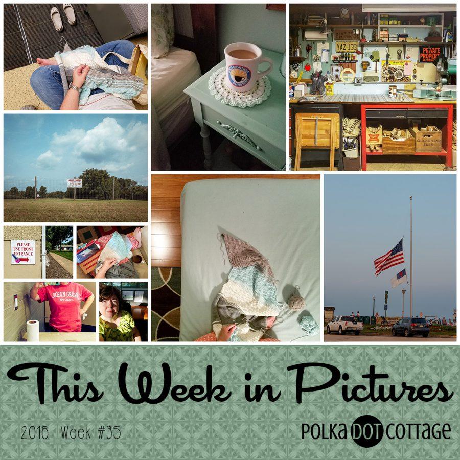 This Week in Pictures, Week 35, 2018