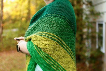 The Taryn Shawl Knitting Pattern by Lisa Clarke, Green version texture