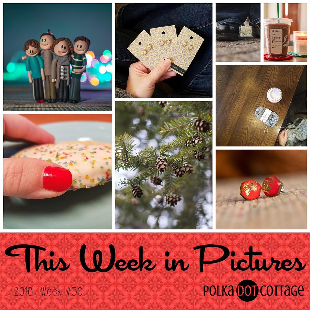 This Week in Pictures, Week 50, 2018