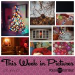 This Week in Pictures, Week 51, 2018