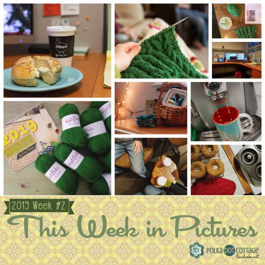 This Week in Pictures, Week 2, 2019