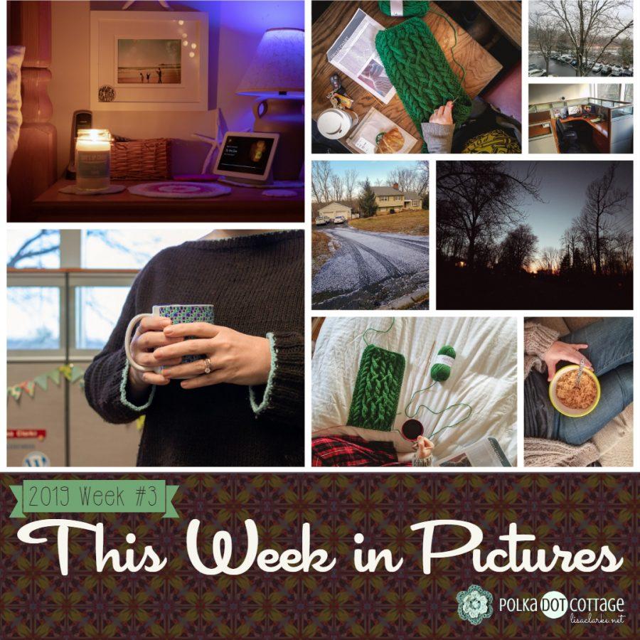 This Week in Pictures, Week 3, 2019