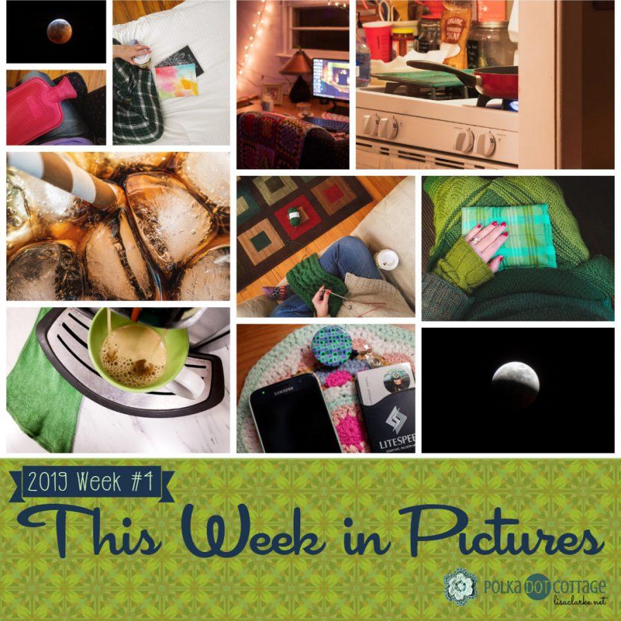 This Week in Pictures, Week 4, 2019