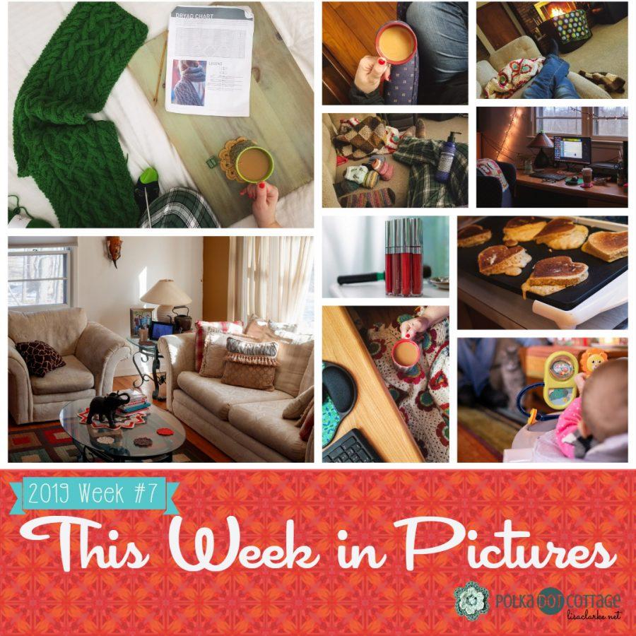 This Week in Pictures, Week 7, 2019