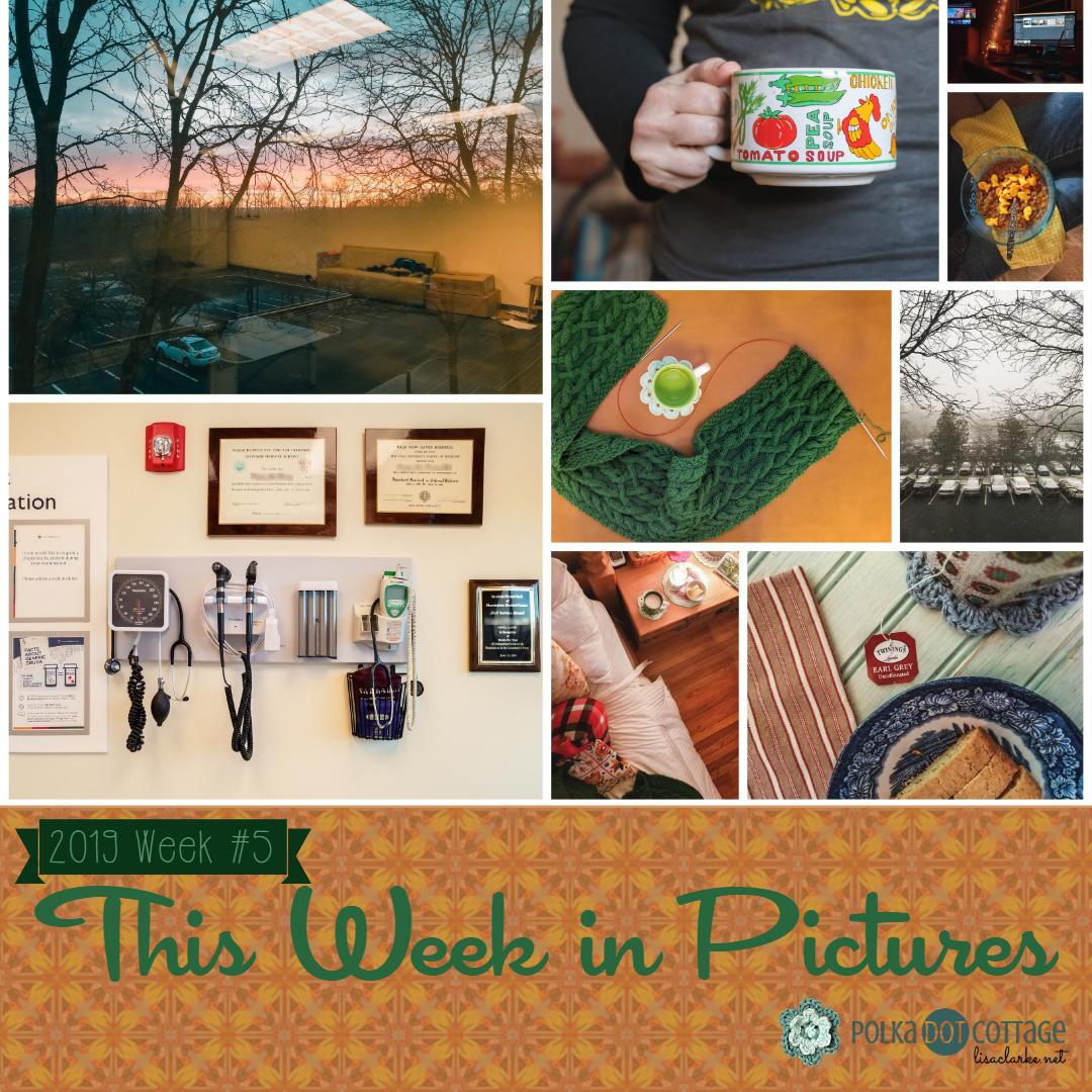 This Week in Pictures, Week 5, 2019