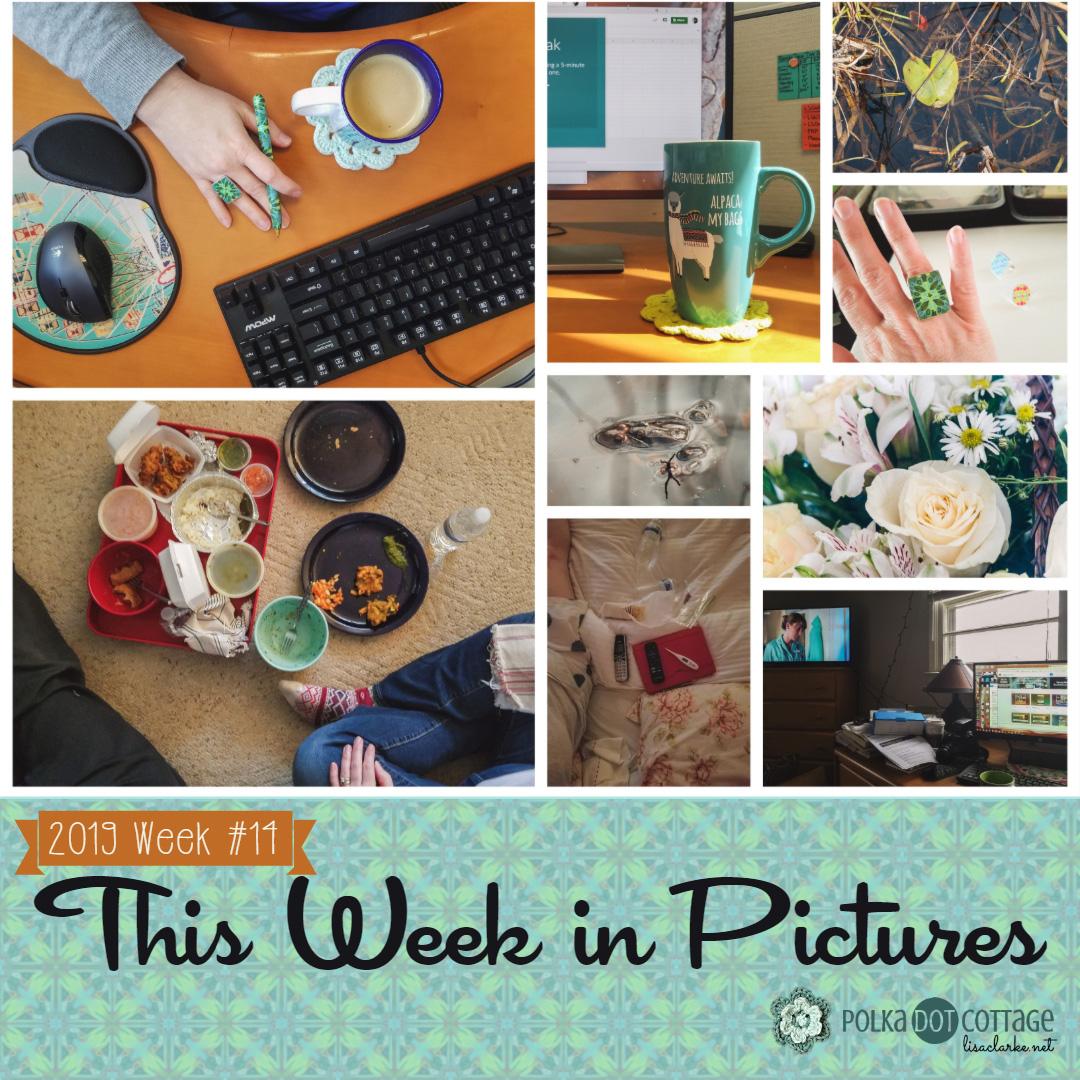 This Week in Pictures, Week 14, 2019
