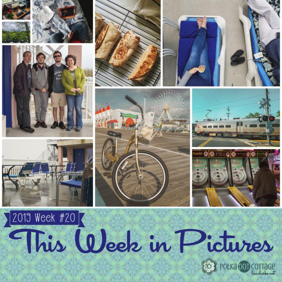 This Week in Pictures, Week 20, 2019
