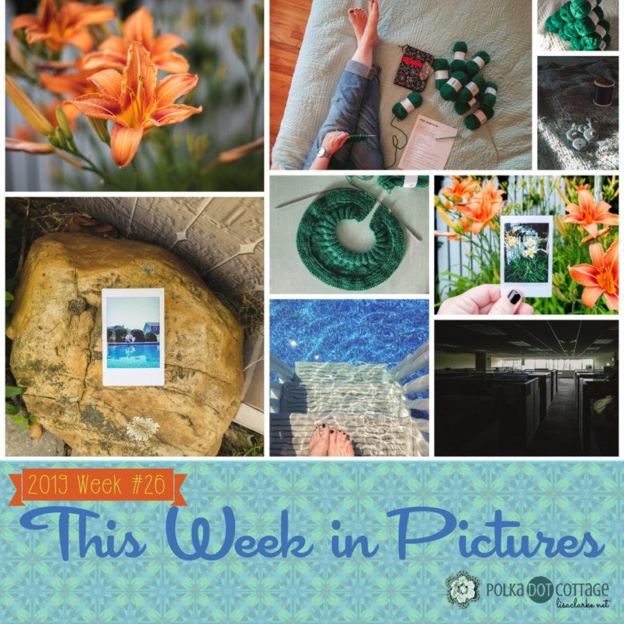 This Week in Pictures, Week 26, 2019