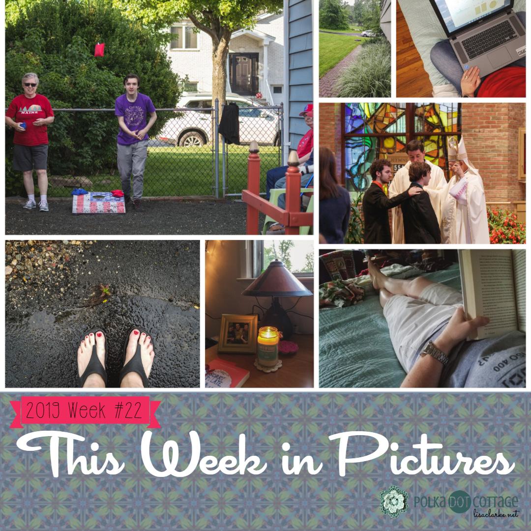 This Week in Pictures, Week 22, 2019