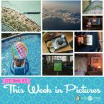 This Week in Pictures, Week 32, 2019