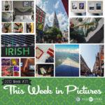 This Week in Pictures, Week 34, 2019