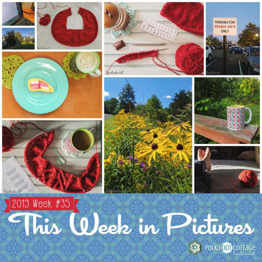 This Week in Pictures, Week 35, 2019