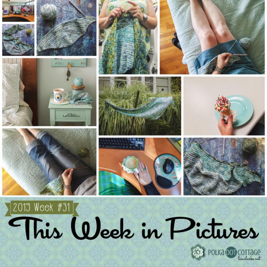 This Week in Pictures, Week 31, 2019