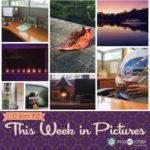 This Week in Pictures, Week 38, 2019