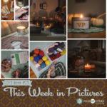 This Week in Pictures, Week 41, 2019