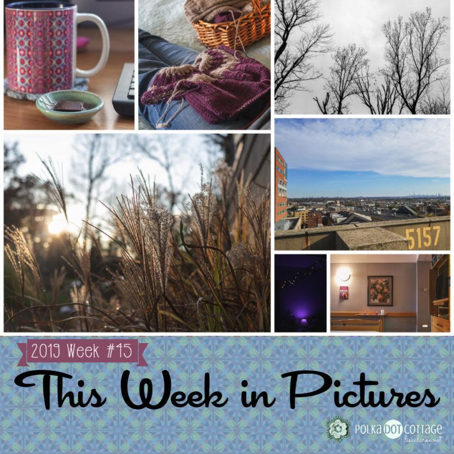 This Week in Pictures, Week 45, 2019