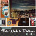This Week in Pictures, Week 47, 2019