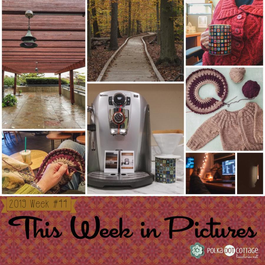 This Week in Pictures, Week 44, 2019