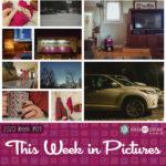 This Week in Pictures, Week 4, 2020