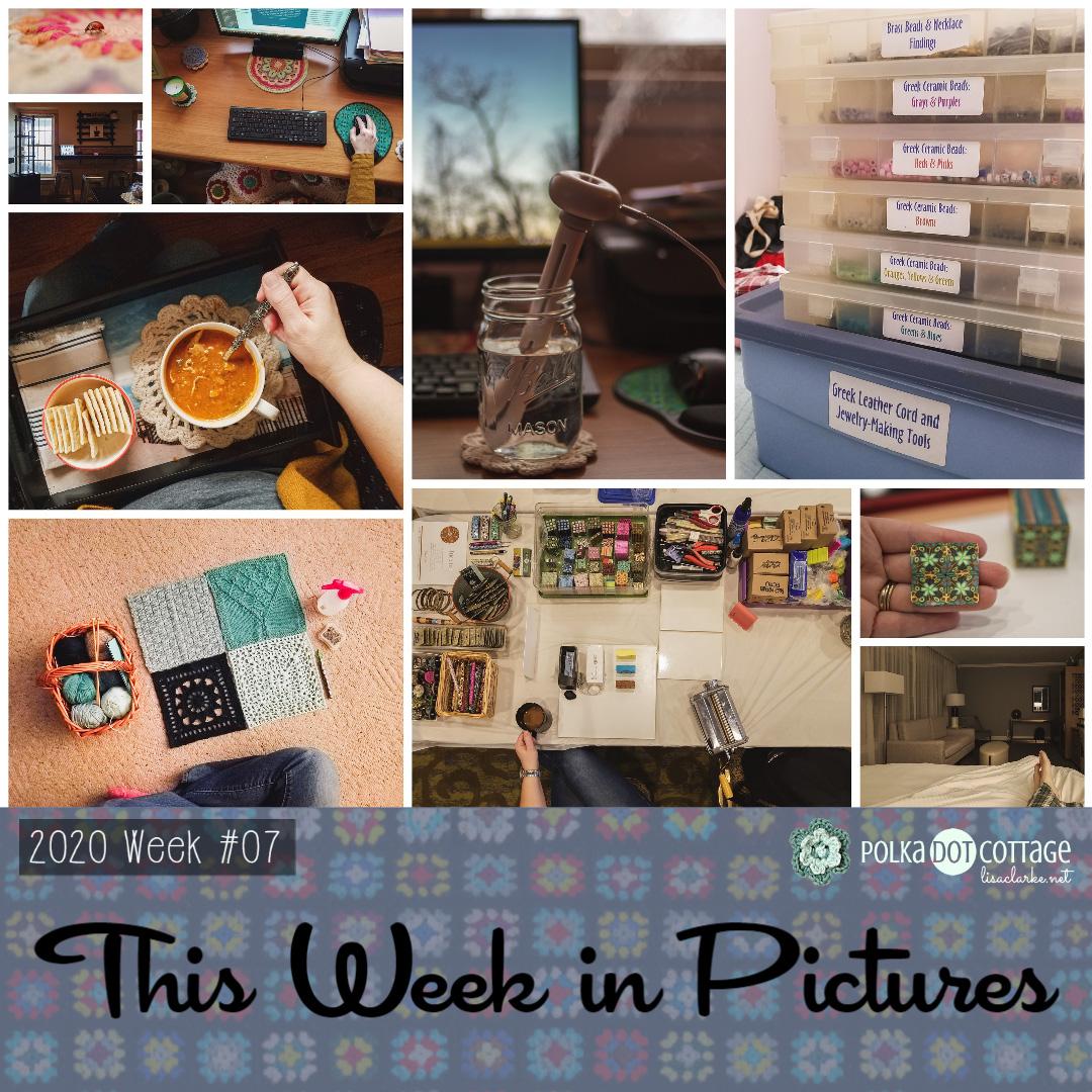 This Week in Pictures, Week 7, 2020