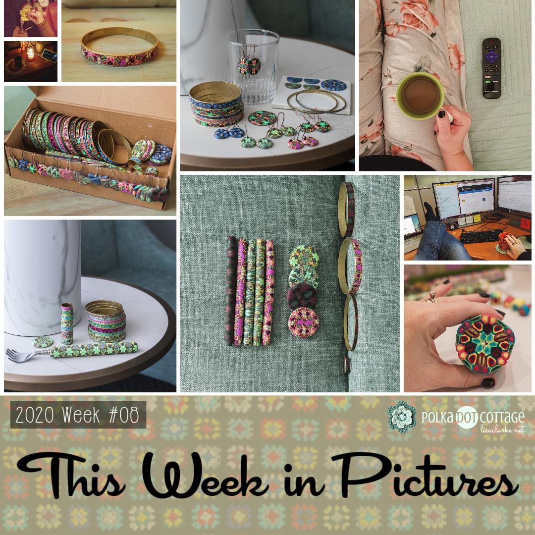 This Week in Pictures, Week 8, 2020
