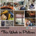 This Week in Pictures, Week 10, 2020