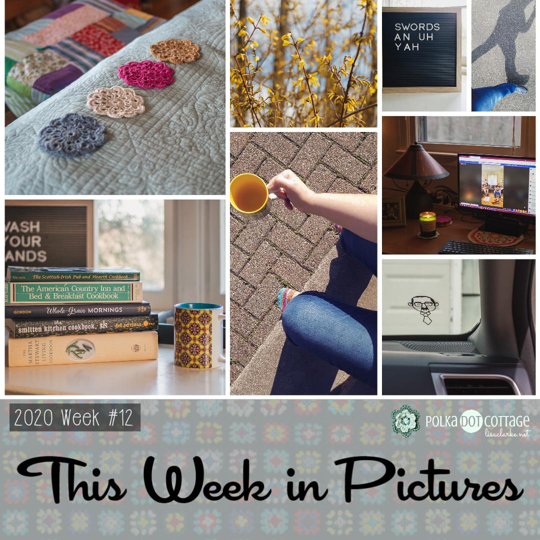 This Week in Pictures, Week 12, 2020
