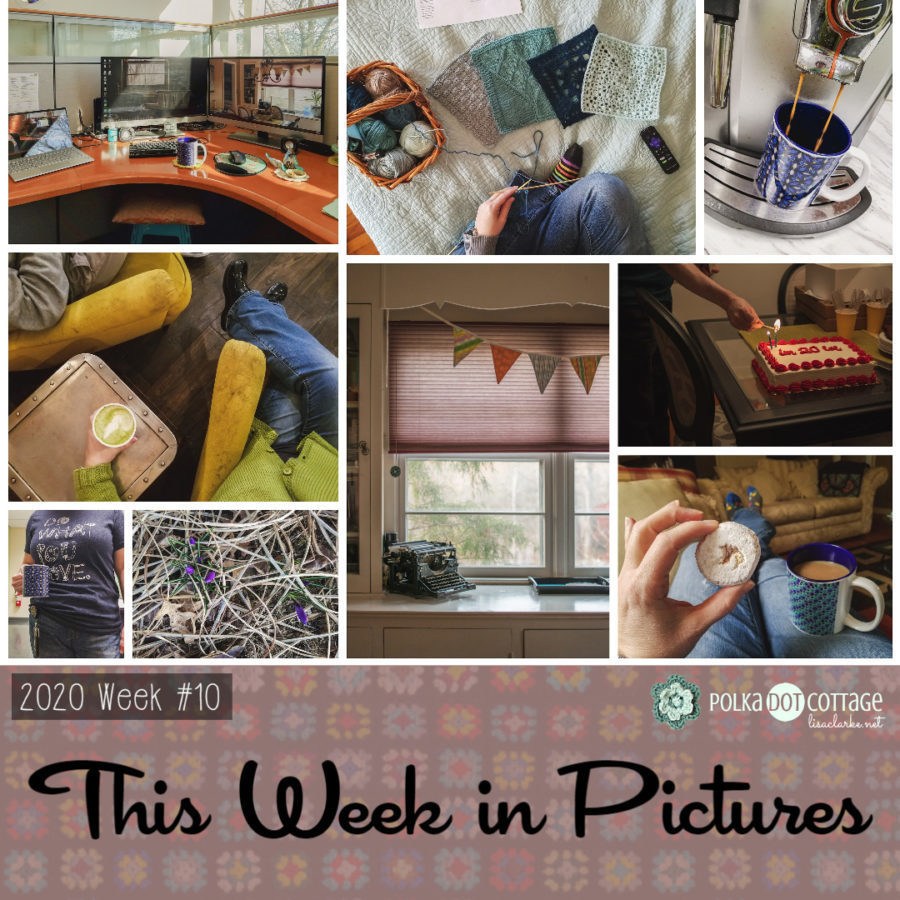 This Week in Pictures, Week 10, 2020