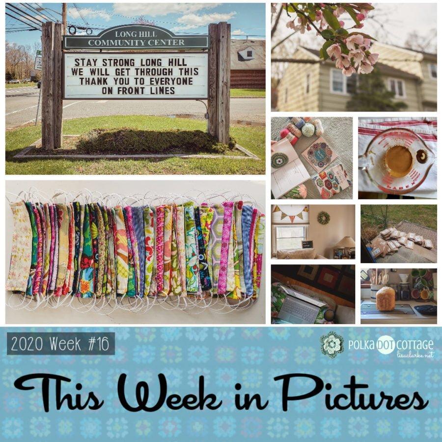 This Week in Pictures, Week 16, 2020