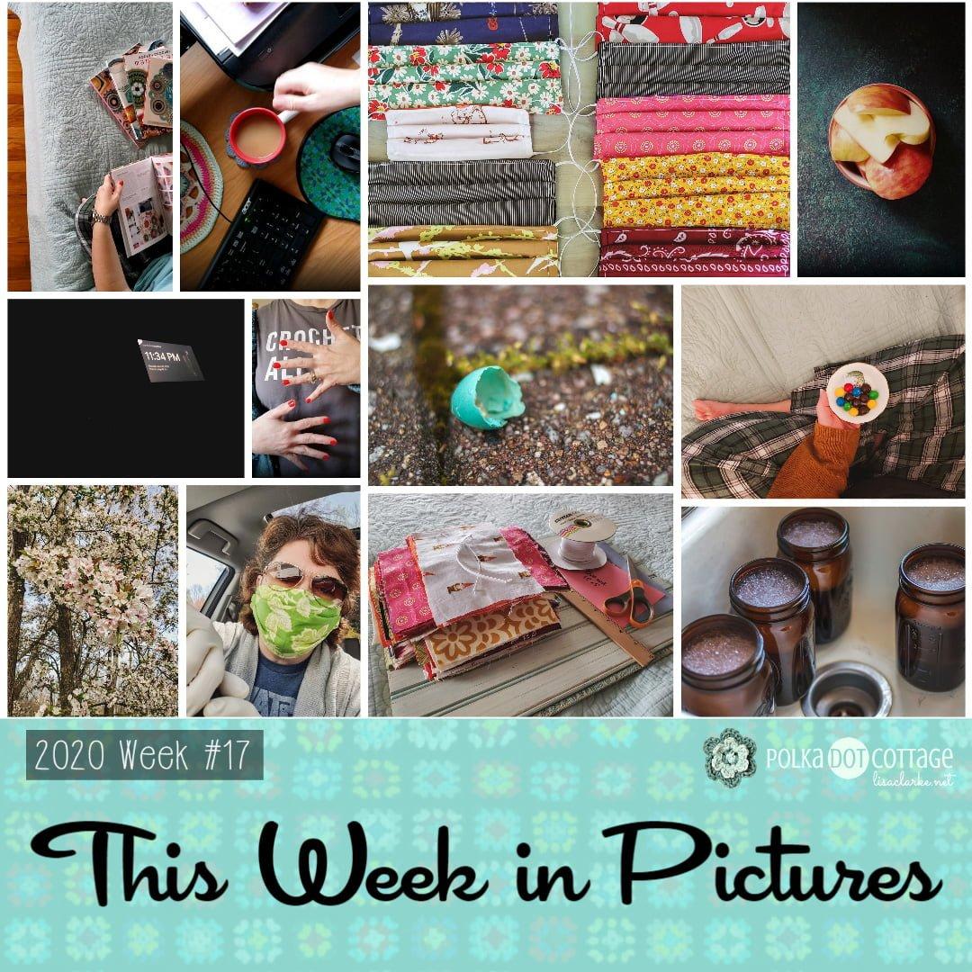 This Week in Pictures, Week 17, 2020