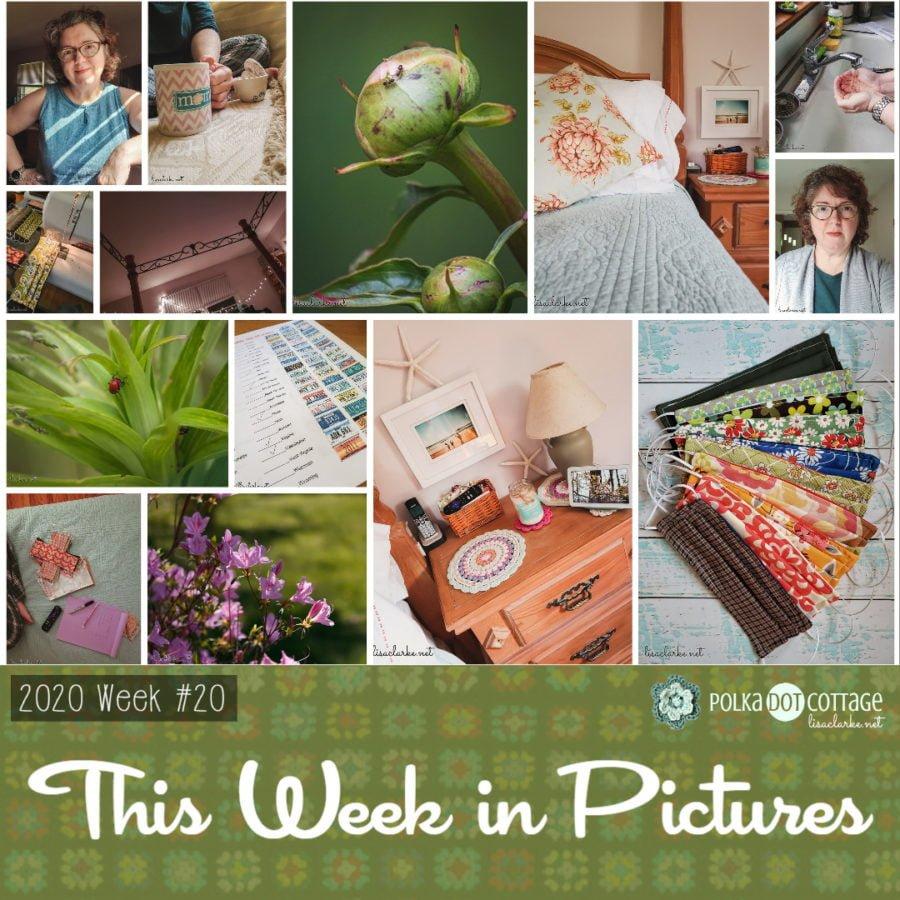 This Week in Pictures, Week 20, 2020
