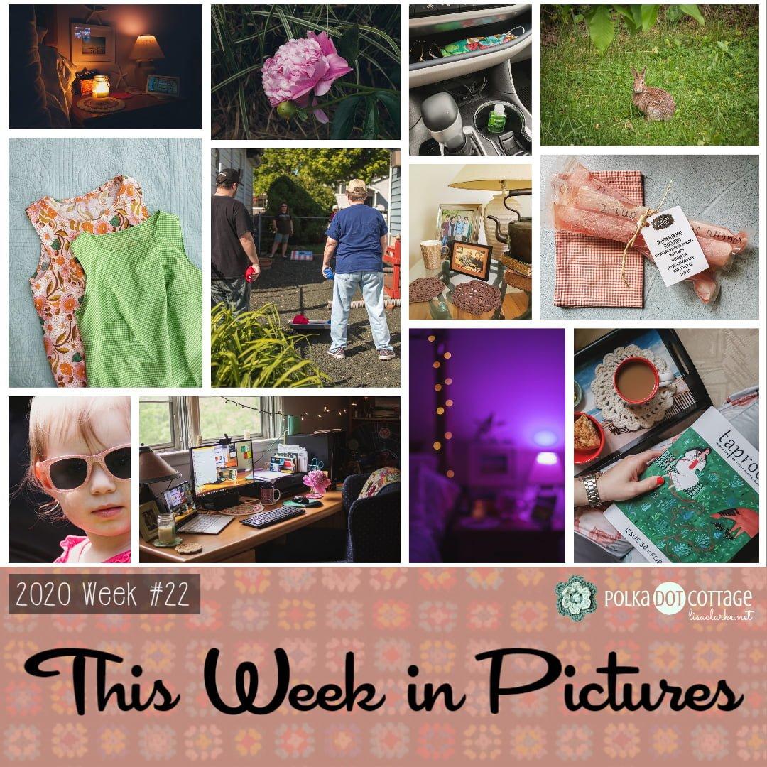This week in Pictures, Week 22, 2020