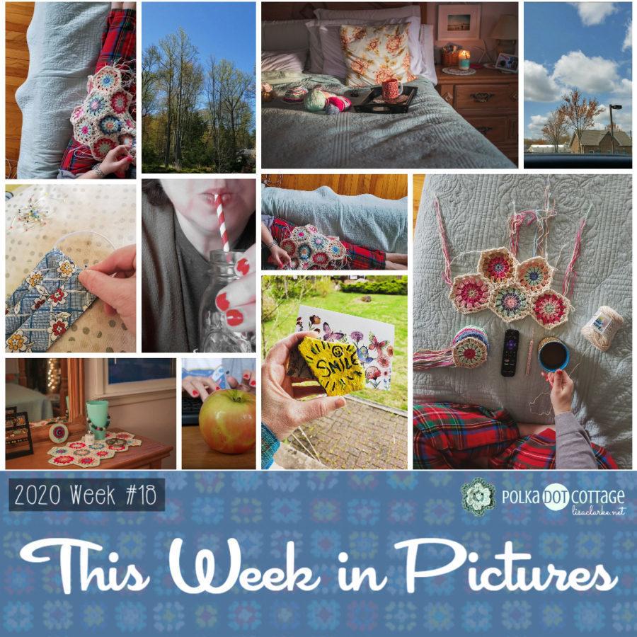 This Week in Pictures, Week 18, 2020