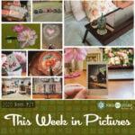 This Week in Pictures, week 24, 2020