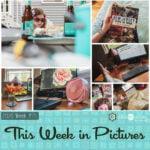 This Week in Pictures, Week 26, 2020