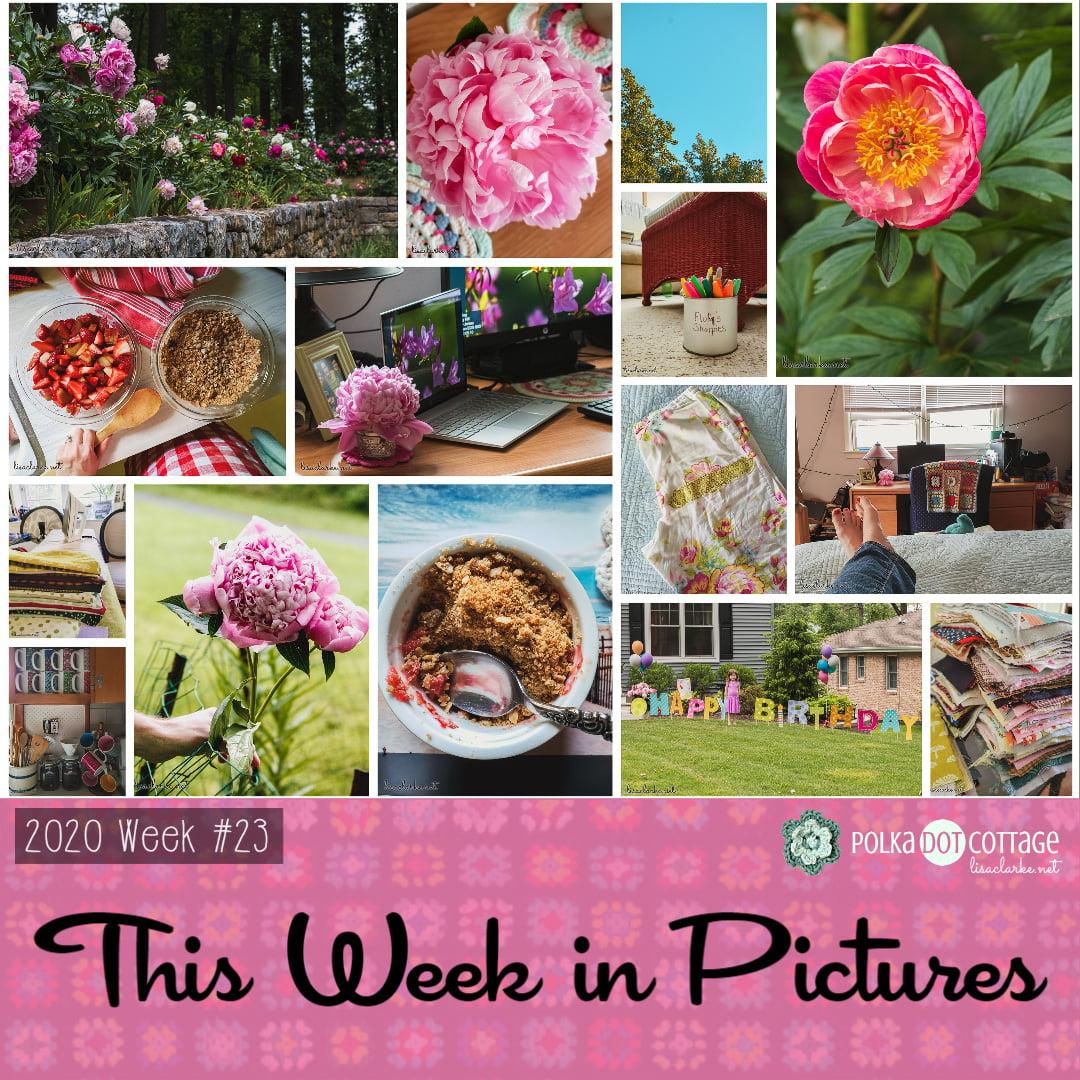 This Week in Pictures, Week 23, 2020
