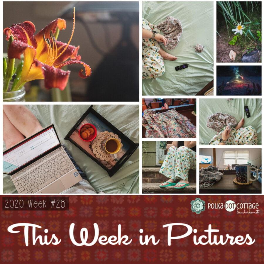 This Week in Pictures, Week 28, 2020