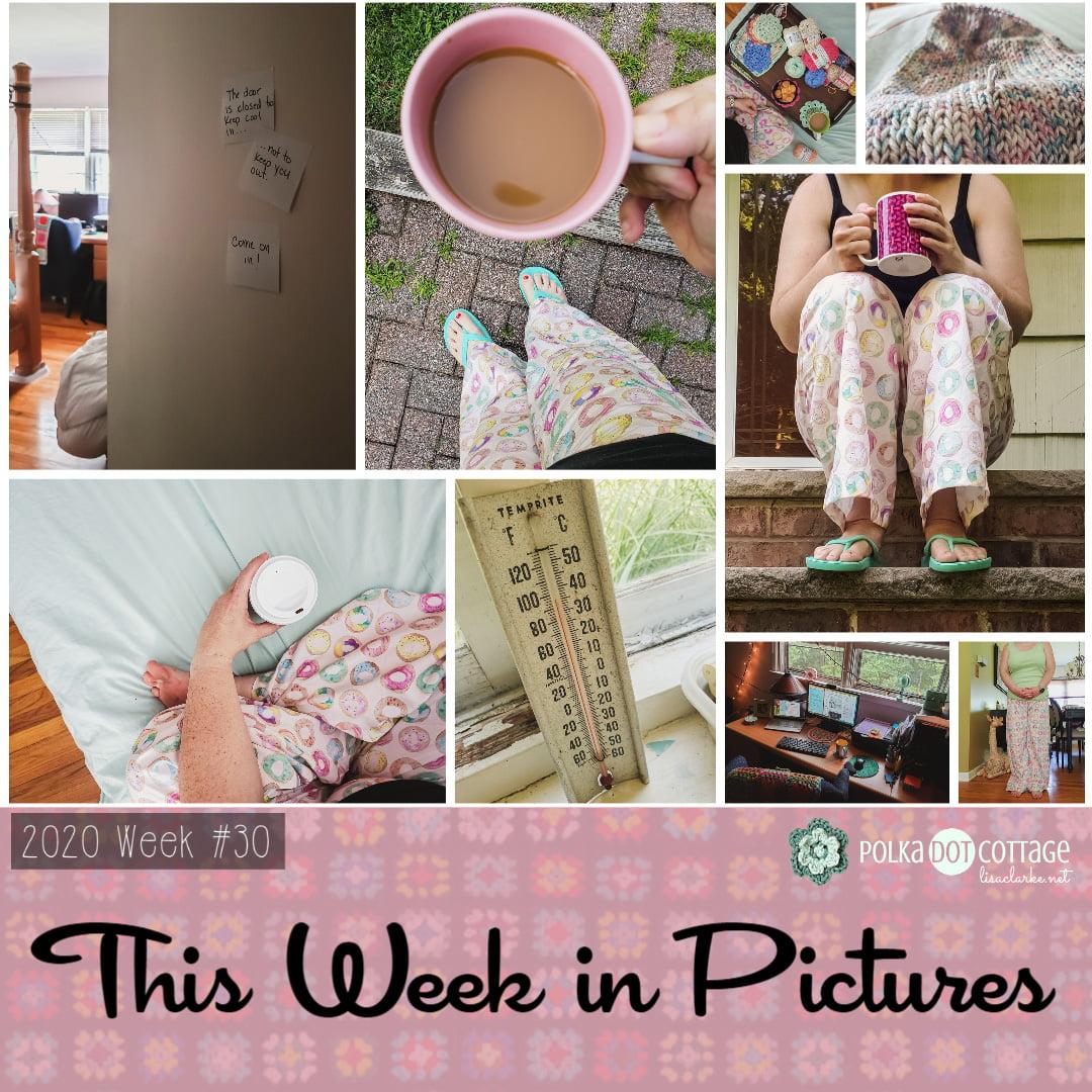 This Week in Pictures, Week 30, 2020