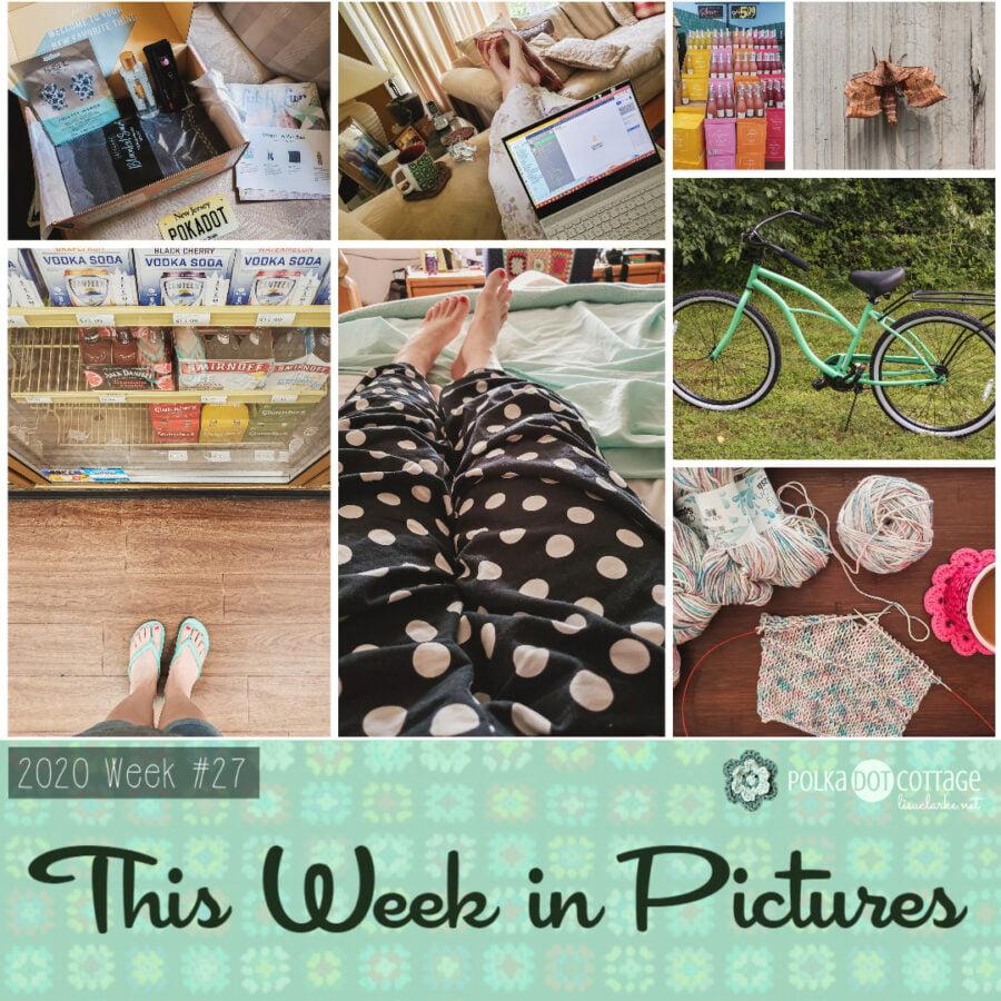 This Week in Pictures, Week 27, 2020