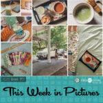 This Week in Pictures, Week 31, 2020