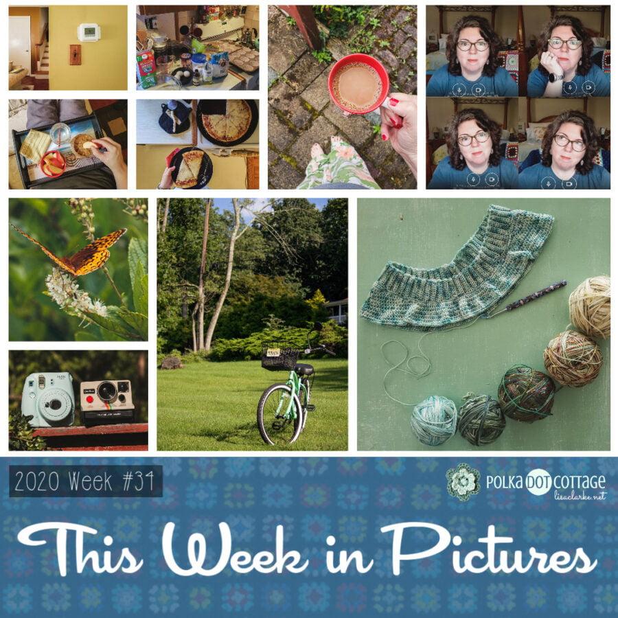 This Week in Pictures, Week 34, 2020
