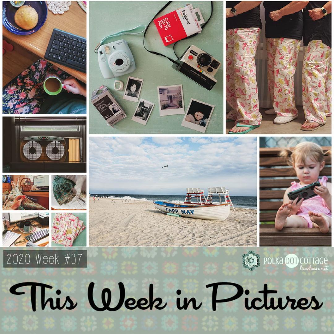 This Week in Pictures, Week 37, 2020