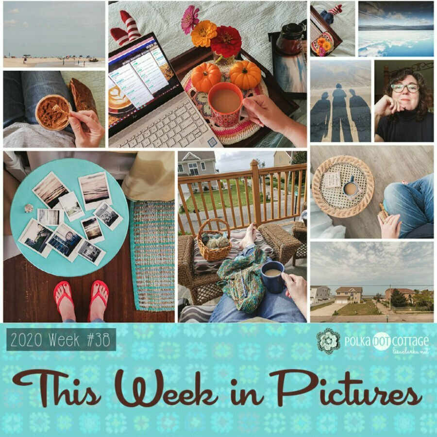 This Week in Pictures, Week 38, 2020