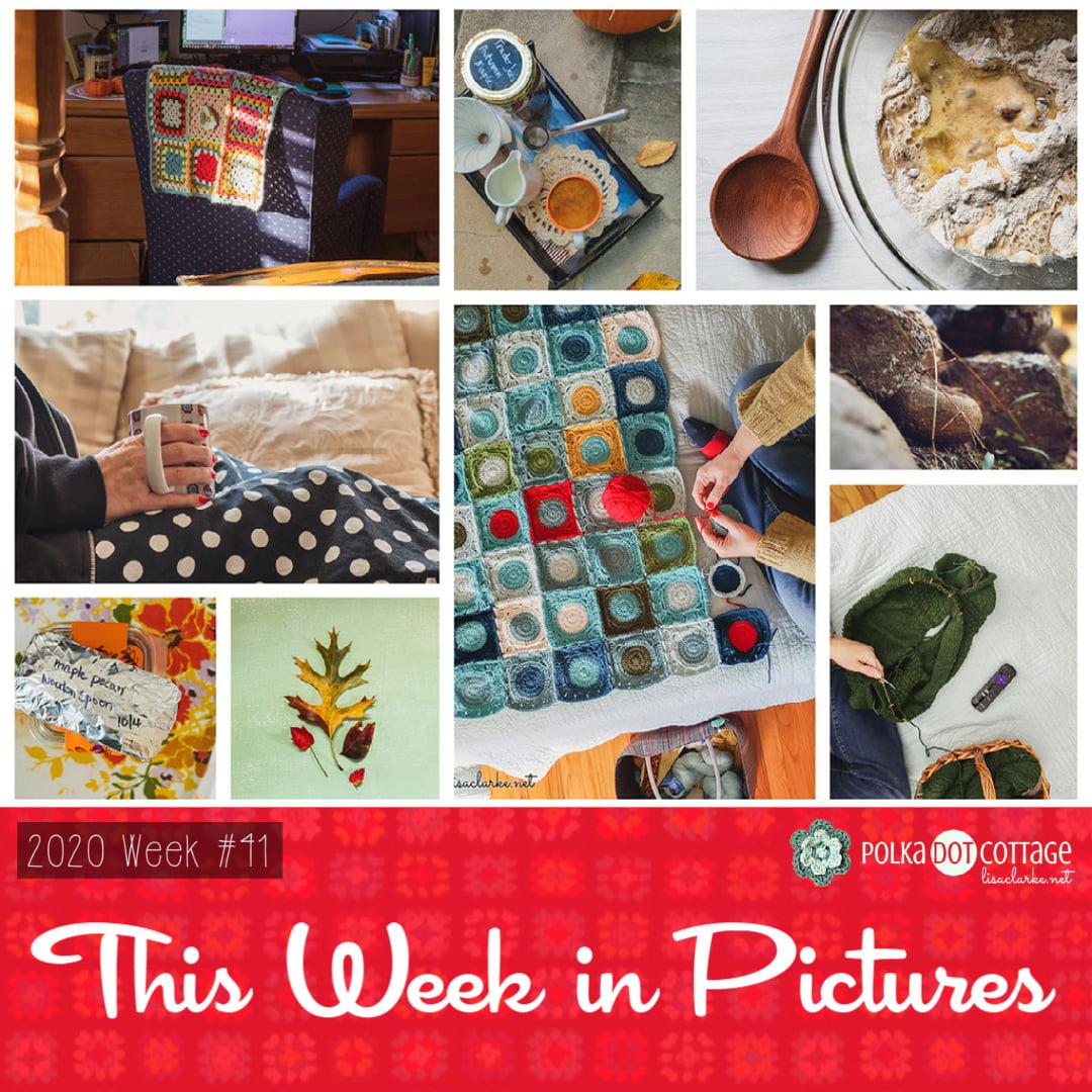 This Week in Pictures, Week 41, 2020