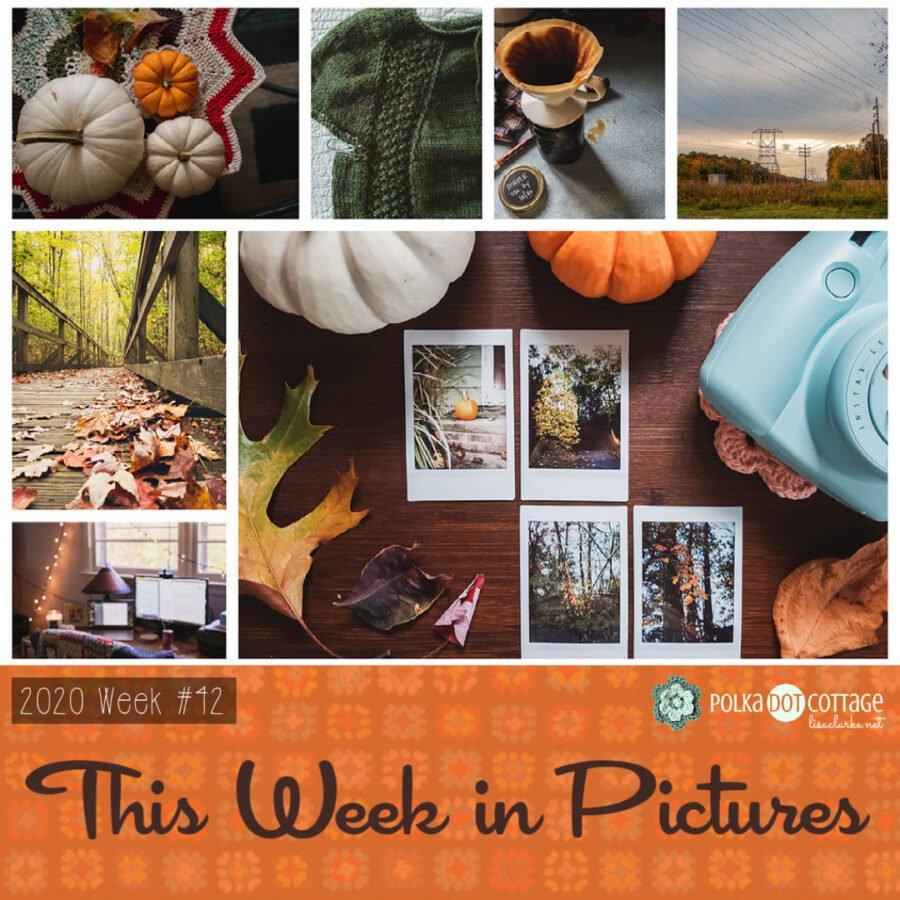 This Week in Pictures, Week 42, 2020