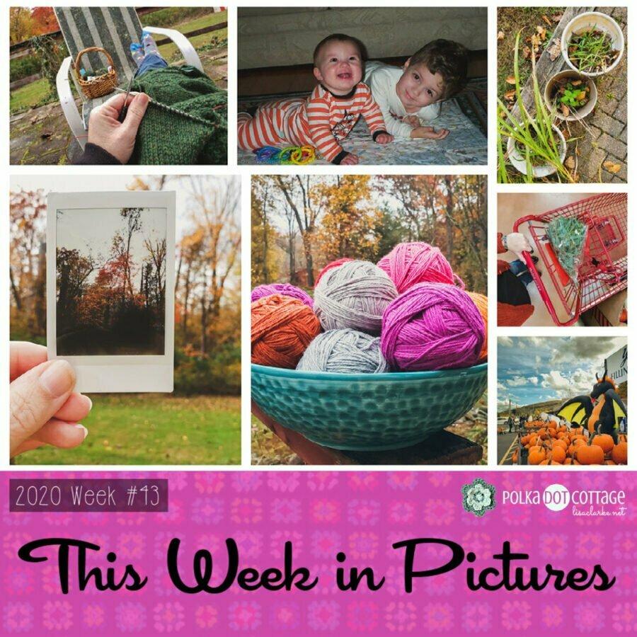 This Week in Pictures, Week 43, 2020